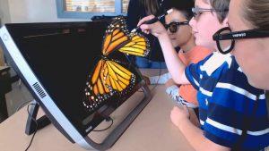 Butterfly K Space